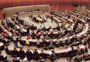 United Nations World Conference on Human Rights in Vienna, 1993